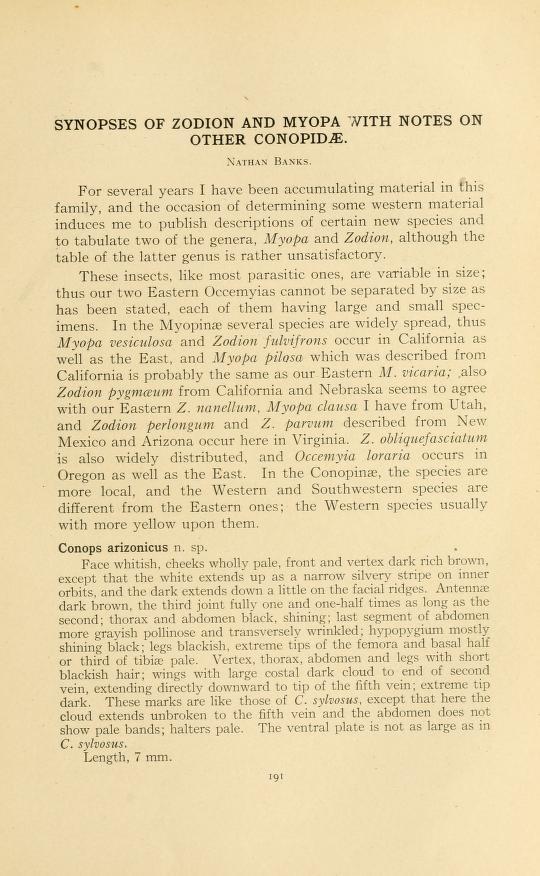 Banks (1916) Ann. Ent. Soc. Amer. 9: 191-200